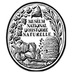museum homme histoire naturelle