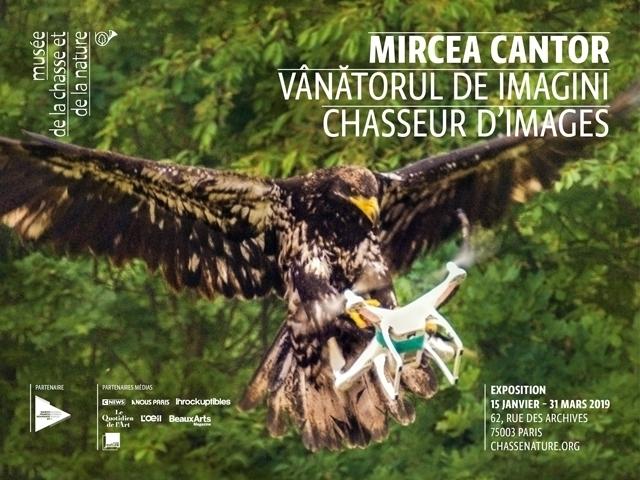 Musée de la chasse et de la nature – carte blanche à Mircea Cantor